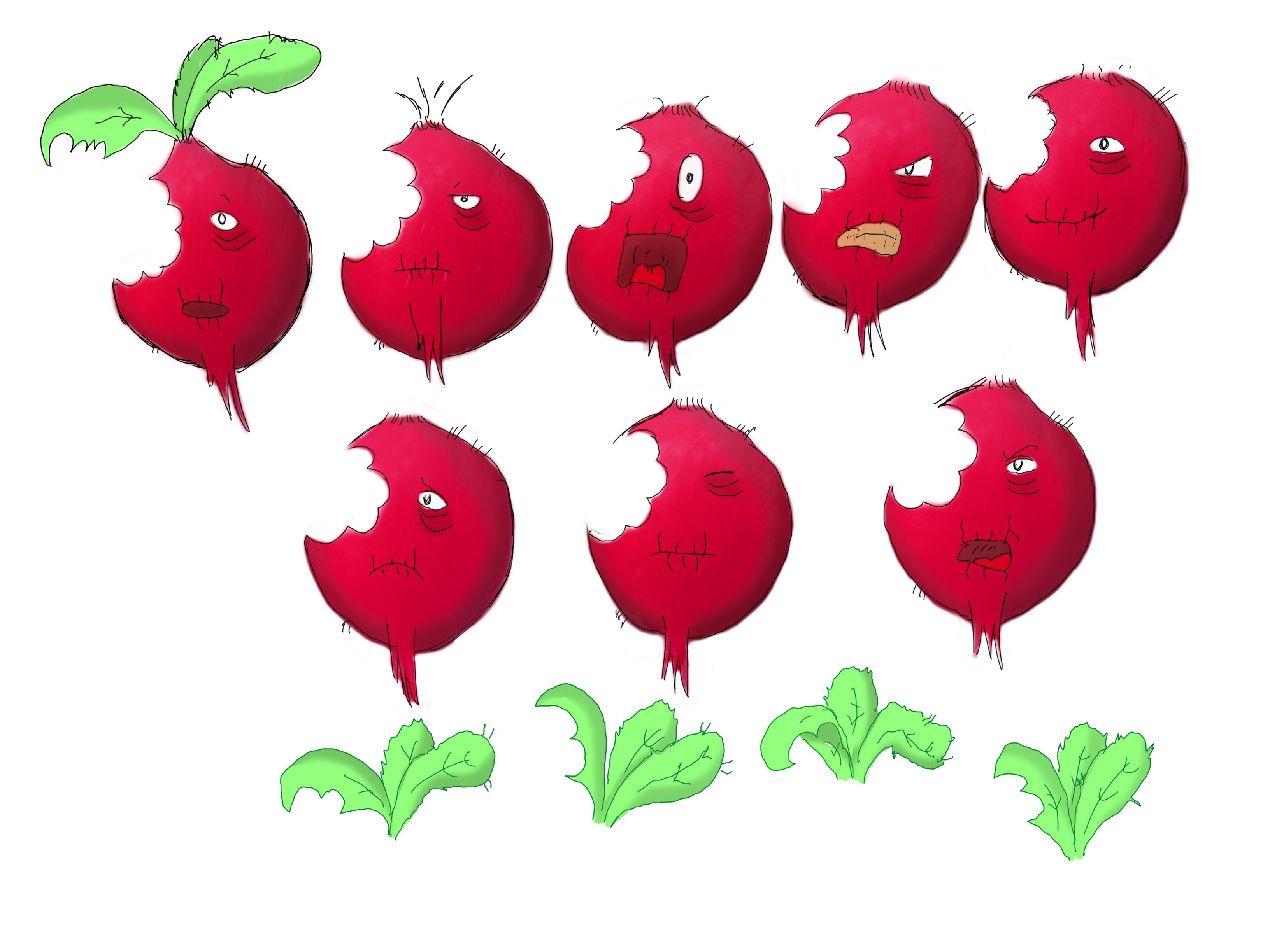 Radish expressions