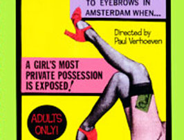 Diary of a Hooker (Adults Only)