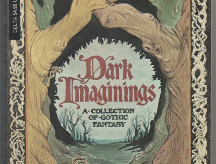 Dark Imaginings: A Collection of Gothic Fantasy