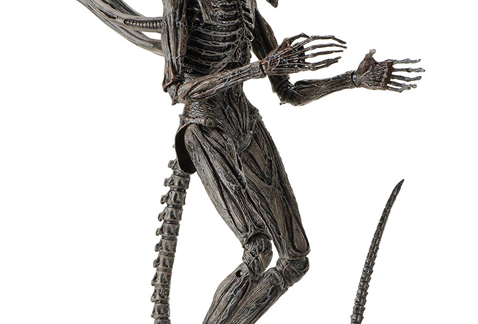 "NECA Alien: Covenant Xenomorph Scale Action Figure, 7"""