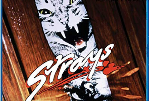 Strays (Scream Factory)