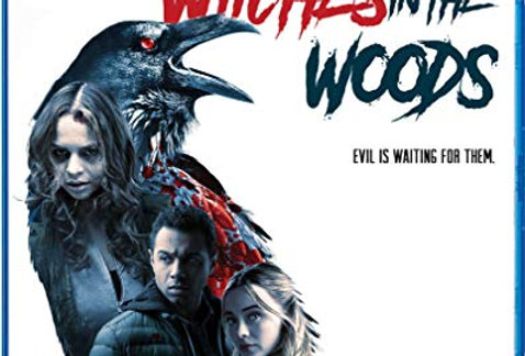 Witches In The Woods (Shout Factory) (Blu-Ray)