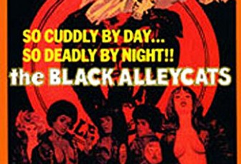 Black Alleycats, The