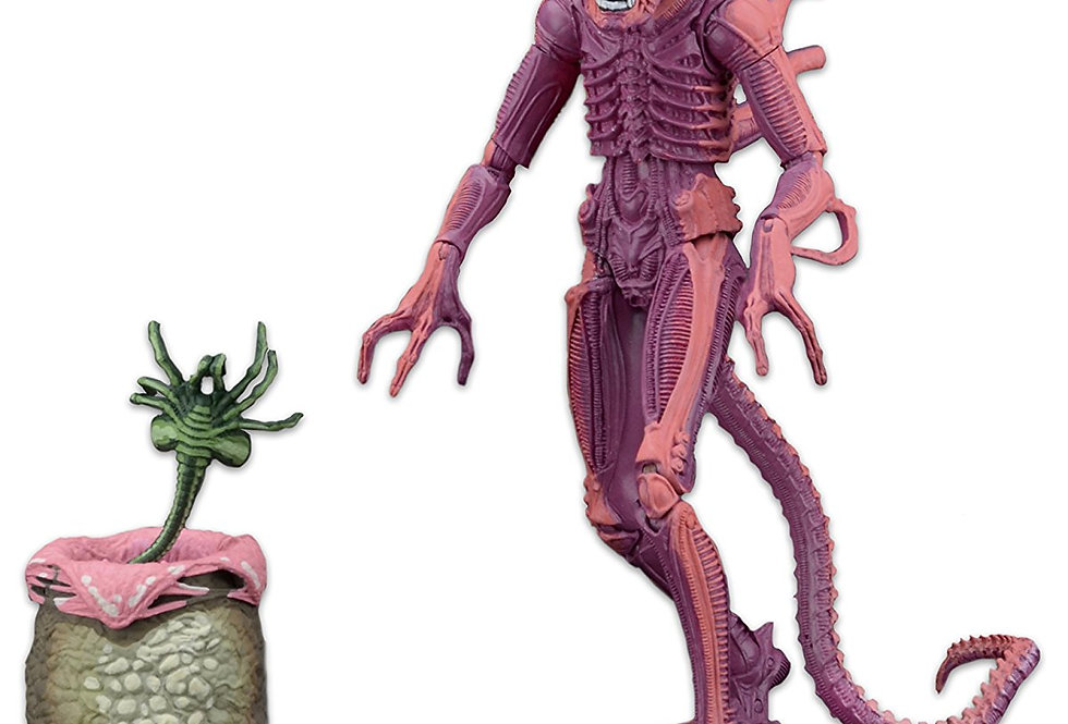 NECA Aliens Scale Warrior (Arcade Appearance) Action Figure, 7""