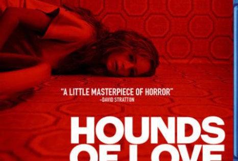 Hounds of Love (Australian Import - ALL REGION)