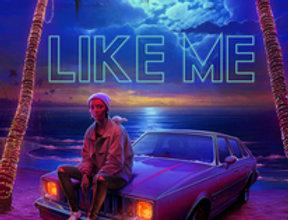 Like Me  [Import]