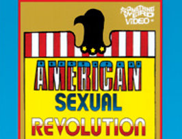 American Sexual Revolution (Adults Only !)