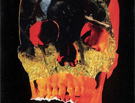 Cannibal Holocaust [Import] (Uncut)