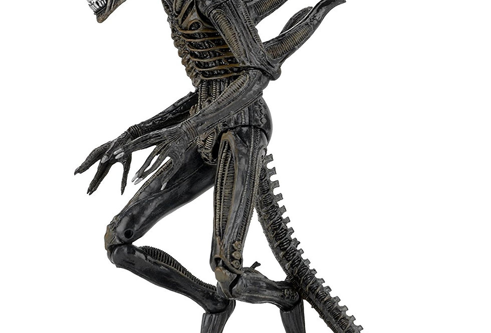 "Aliens Series 11: Defiance Alien 7"" Action Figure, Xenomorph"