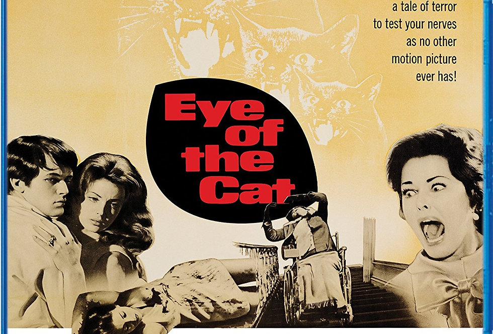 Eye of the Cat  (Import)