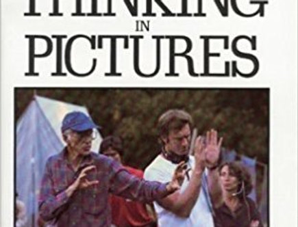 Thinking in Pictures: The Making of the Movie Matewan by John Sayles