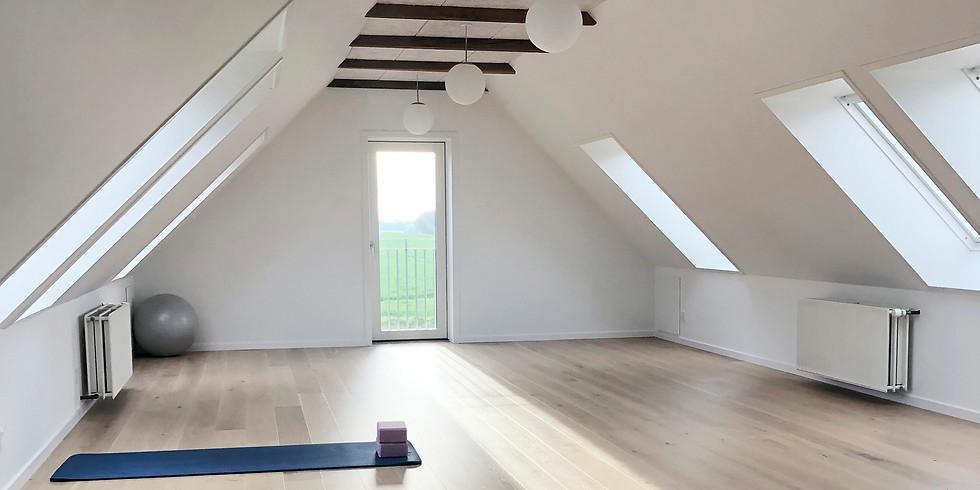 Fuldt-booket - Hatha yoga - 6 mandage