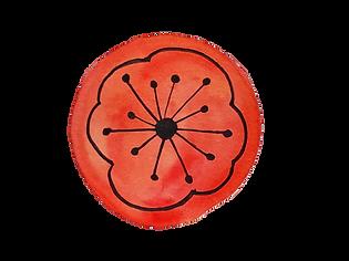 fleur coquelicot.png