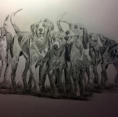 Hound Pack