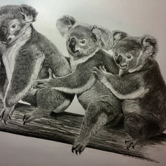 Australian Threesome