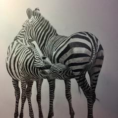 A Zebra Lunch In Kenya