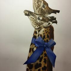 Blue Ribbon Giraffes