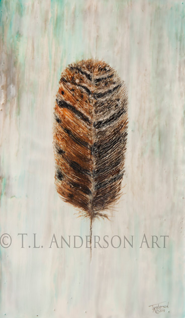 Owl Feather