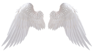 angel_wings_by_no_look_pass-daiw3gs.png
