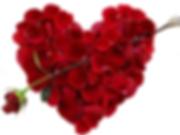 rose.heart_.valentine.png