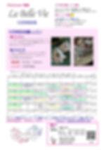 ★特別レッスンチラシ2019.12.jpg