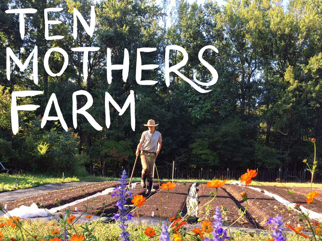 ten mothers farm