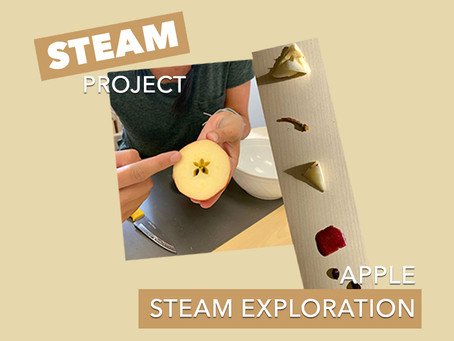 At Home STEAM Project: 008