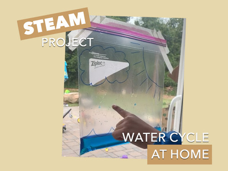 At Home STEAM Project: 006