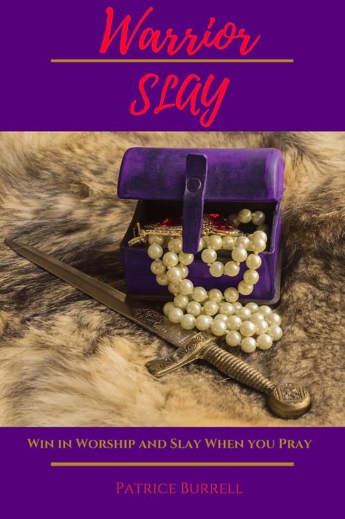 Warrior Slay Book