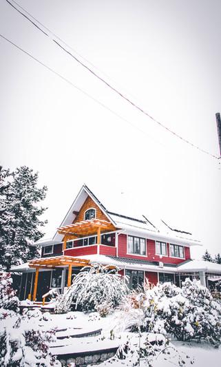 winter in suburbia