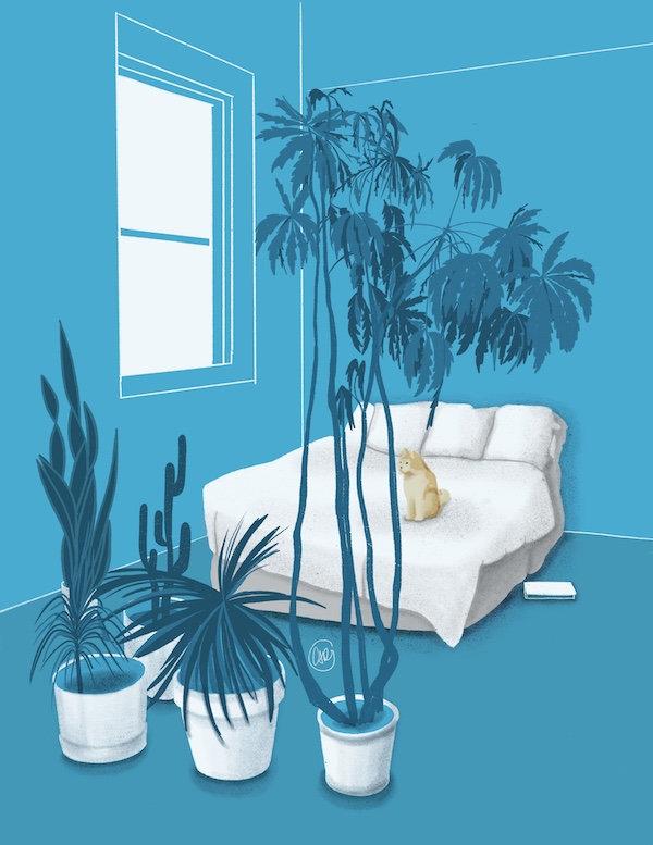 plants3_carolinagronholm.jpeg