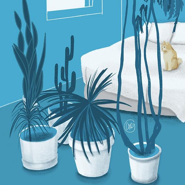 plants_carolinagronholm.PNG