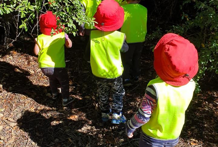 Bush Preschool