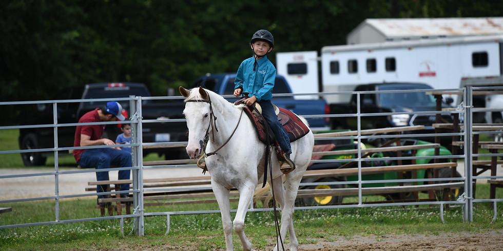 Beginner One Day Horse Camp
