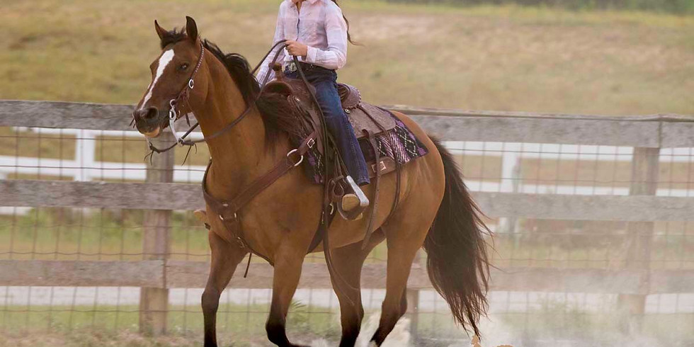 Beginner One Day Horse Camp 6/17/21