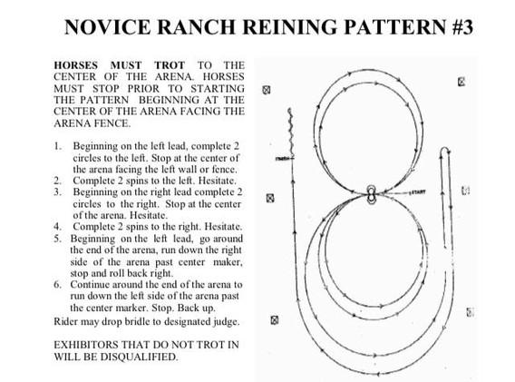 novice ranch reining.jpg