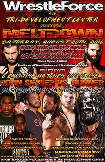 WrestleForce: Meltdown 2016