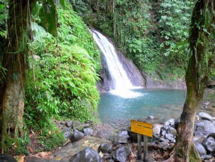 parc-national-guadeloupe-29828_w400.jpg