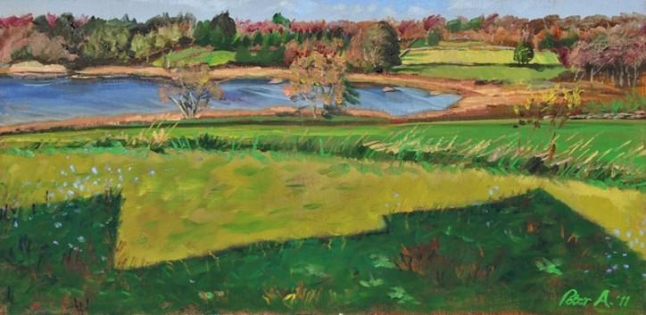 Briggs Marsh by Peter Aldrich