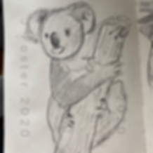 Day 5 - Koala.PNG