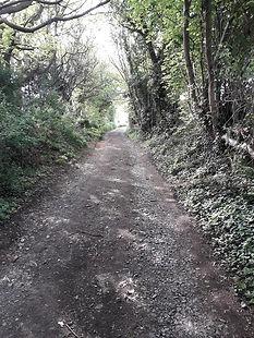 HHook - Walk to Penn Woods  (Medium).jpg