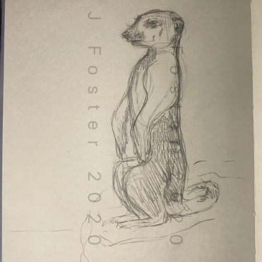 Day 20 - Meerkat (Small).png