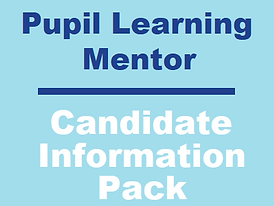 Pupil Learning Mentor.png