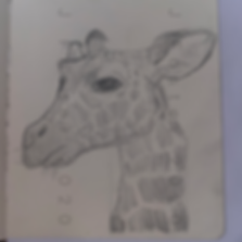 Day 19 - Giraffe (Small).png