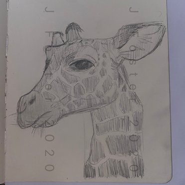 Day 19 - Giraffe (Small).png