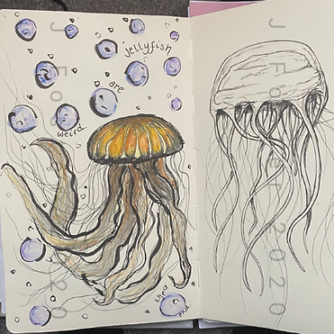Day 23 - Jellyfish (Small).png