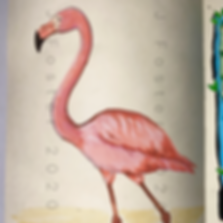 Day 13 - Flamingo (Medium).PNG