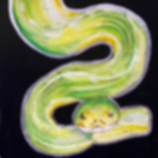 Day 10 - Green Tree Python (Medium).PNG
