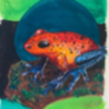 Day 7 - Poison Dart Frog.PNG
