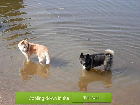 Coolingdown6.jpg